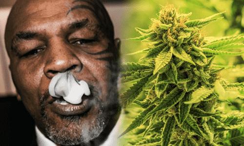 Mike tyson vydachuje dym siska marihuany
