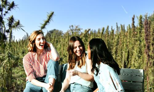 tri mladé ženy sedia na lavičke pred konopným polom a smejú sa