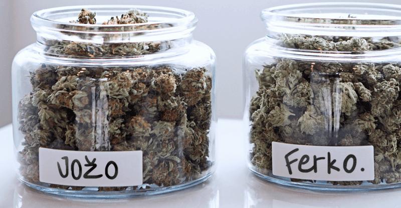 skladovanie marihuany šišky konope v sklenených nádobách